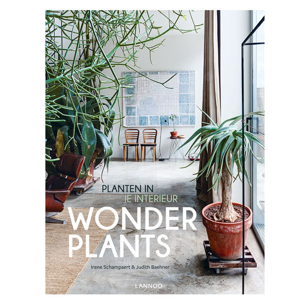 Wonderplants-Planten-in-je-interieur.