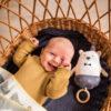 """Ava & Yves muziekmobiel beer Ben je op zoek naar een uniek en duurzaamcadeautje voor een geboorte? Deze witte beer muziekmobiel verovert alle harten met het melodietje """"When you wish upon a star"""" Muziekdoosje met vastgenaaid waterafstotend mechanisme Afmeting: 17 cm x 21 cm Materiaal: fijn gebreide stof van 100% biologisch katoen Vulling: 100% polyester Verzorging: handwas op 30 ° Voldoet aan de eisen van EN71 Ontdek ook de mooie knuffels voor de allerkleinsten van Ava en Yves."""