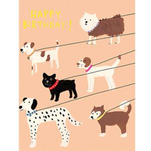 """Wenskaart Happy Birthday out for a walk Carolyn Suzuki Carolyn Suzuki woont in Los Angeles en maakt prachtige illustratiesmet felle kleuren en speelse patronen die vreugde en diversiteit naar voor brengen. Met haar mooie illustraties met een tikkeltje humor steunt ze verschillende goede doelen zoals mensenrechten en het klimaat. Ze gebruikt het bereik van haar kunst in haar activisme om vrouwelijke ondernemers te ondersteunen. Carolyn heeft de laatste 8 jaar een wenskaartenbedrijf en verkoopt haar mooie illustraties van Japan tot Australië. Kidsdinge is dan ook fier om haar prachtige illustraties in Belgie te laten zien. De """"Happy Birthday out for a walk"""" dubbele wenskaart met gouden print is geprint op 100% gerecycled FSC papier van berk. De afmeting van de dubbele wenskaart is 10,8cm x 14cm."""